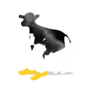 Bazqet koe met klompen