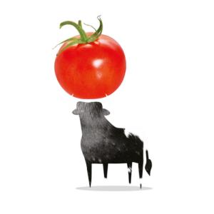 Bazqet stier met tomaat